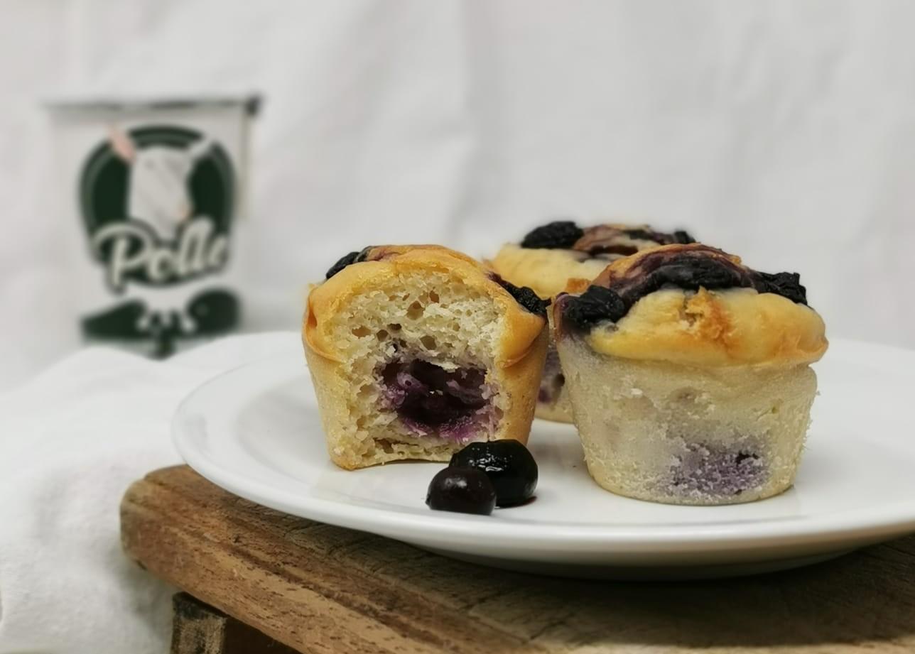 Gezonde muffins met geitenyoghurt en blauwe bessen